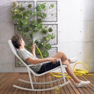 как правильно устроить зеленый уголок дома