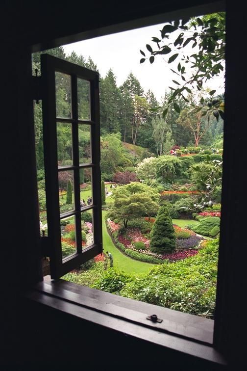 вид из окна на сад