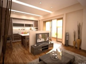 кухня совмещенная с гостиной, фото