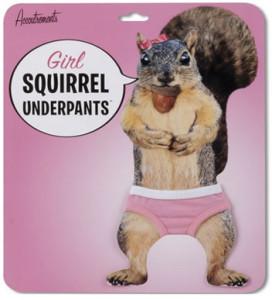 130904-squirrel2